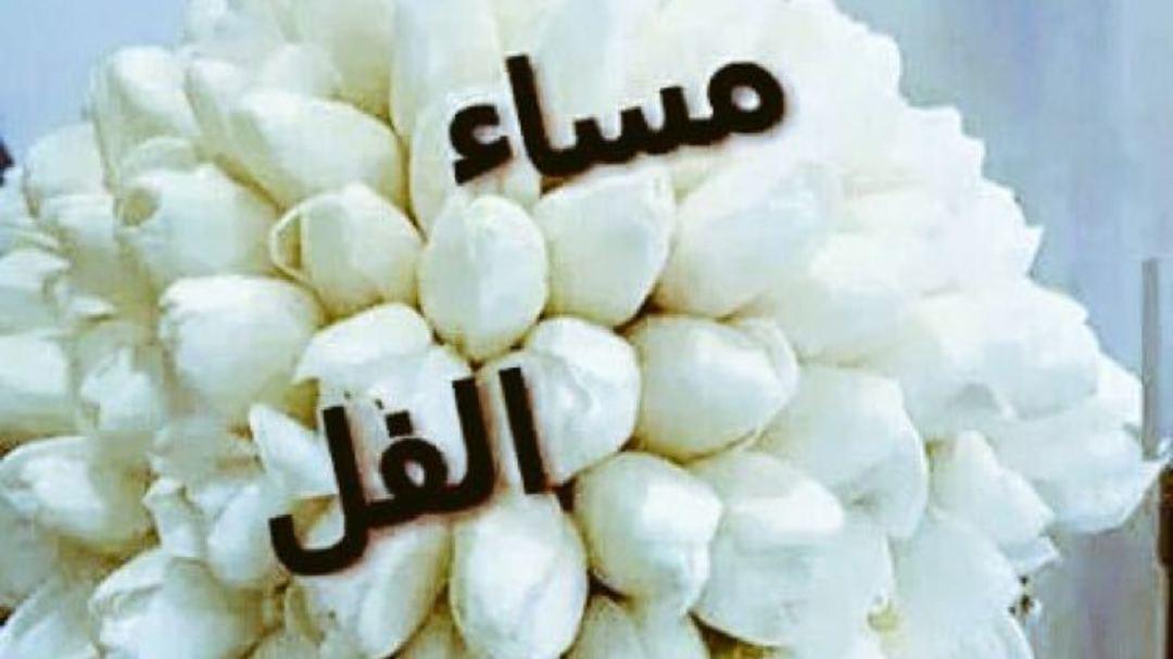 بالصور مساء الفل , ارسل احلي تحية مساء وقول مساء الفل علي الحلوين 5285 12