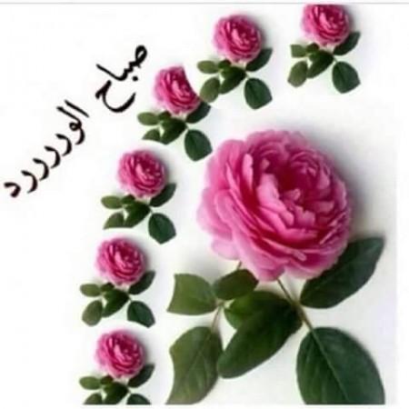 بالصور مسجات صباح الخير حبيبي , صور صباح الخير 5772 10