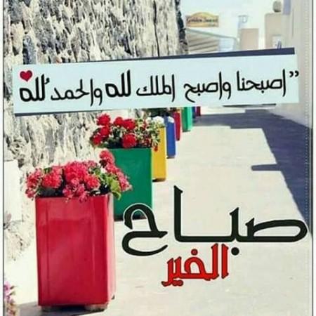 بالصور مسجات صباح الخير حبيبي , صور صباح الخير 5772 13
