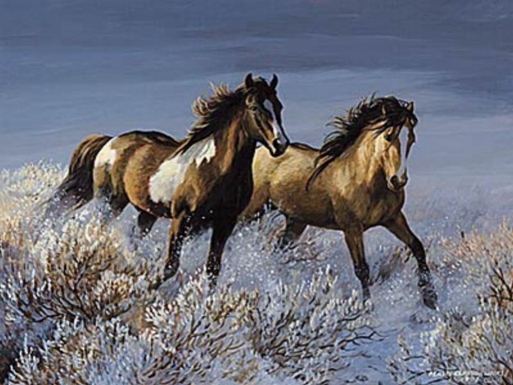 بالصور حصان عربي , صور احصنة عربيه 5795 5