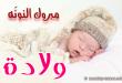بالصور صور للولاده , صور اطفال حديثي الولاده 3859 1 110x75