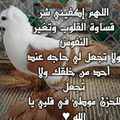 بالصور دعاء الضيق , ادعيه الضيق بالصور 4238 5