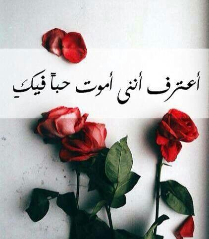 بالصور كلام جميل للحبيب , تعبيرات جميلة عن الحب 4676 11