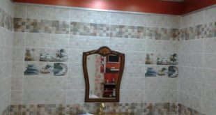 بالصور اشكال سيراميك حمامات , صور سيراميك حديث 5811 15 310x165