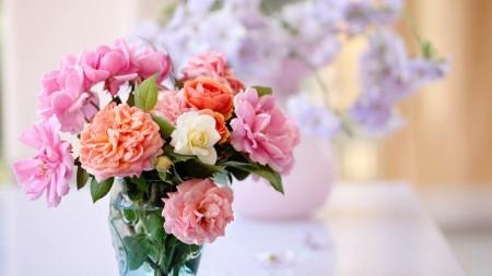 بالصور خلفيات ورد , صور زهور حلوه 5875 9