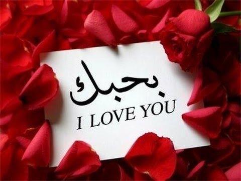 بالصور رسائل حب وعشق , اروع كلمات وعبارات الغرام 6704 1