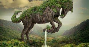 صورة اشياء غريبة , اغرب الاشياء علي كوكب الارض