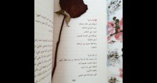 كلمات في الحب والغرام والعشق احلى كلام في الحب , رومانسيات