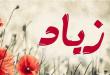 بالصور معنى اسم زياد , زياد فى القاموس 1160 2 110x75