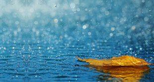 صورة خلفيات مطر , اجمل الخلفيات للمطر