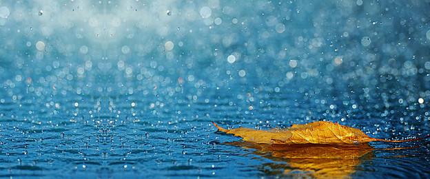 صور خلفيات مطر , اجمل الخلفيات للمطر