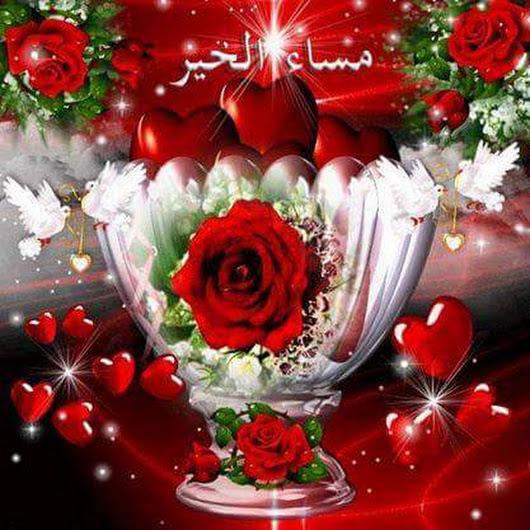 بالصور مساء الورد حبيبي , اجمل تحيات المساء 4436 1