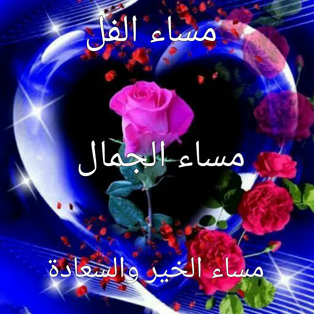 بالصور مساء الفل , ارسل احلي تحية مساء وقول مساء الفل علي الحلوين 5285