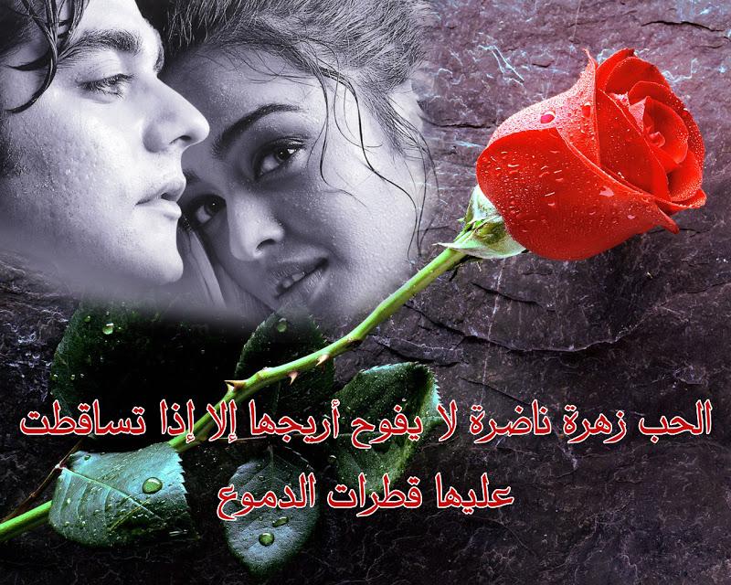 بالصور اجمل صور حب رومانسيه , بتحب الرومانسيه اليكي بعض الصور بكلمات تعبر عن عشقك 5336 2