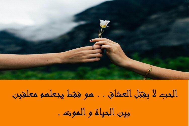 بالصور كلمات عن الحب , اجمل كلام فى الحب 5385 7