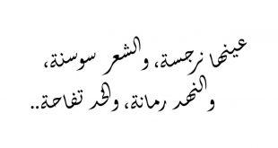 بالصور شعر عربي فصيح , اجمل الاشعار العربيةالفصيحة 3029 15 310x165