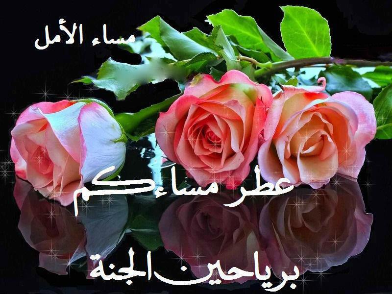 بالصور رسائل مساء الخير , صور ورسائل لتحية مساء الخير 3039 3