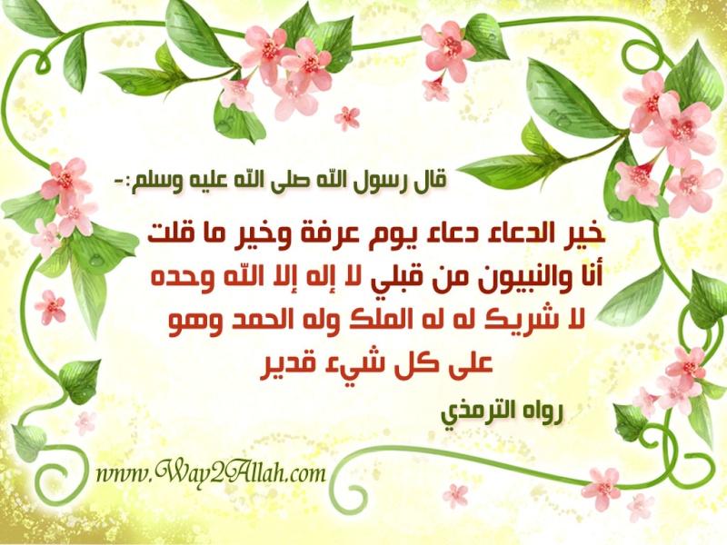 بالصور صور عن يوم عرفه , كلمات دينيه عن يوم عرفه 470 2