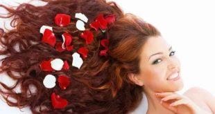 صور ماء الورد للشعر , طريقة لجعل الشعر ناعم وطويل بماء الورد