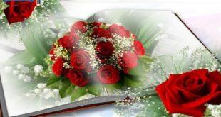 بالصور ورود الحب , اجمل الصور الرومانسية ورود 6507 11 310x165