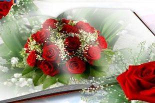 بالصور ورود الحب , اجمل الصور الرومانسية ورود 6507 11 310x205