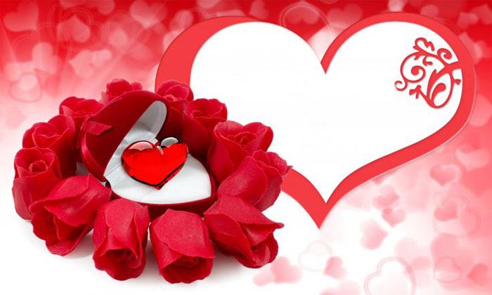 بالصور ورود الحب , اجمل الصور الرومانسية ورود 6507 5