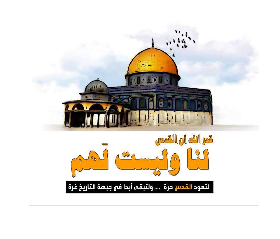 صور مقالة عن فلسطين , فلسطين القلب النابض