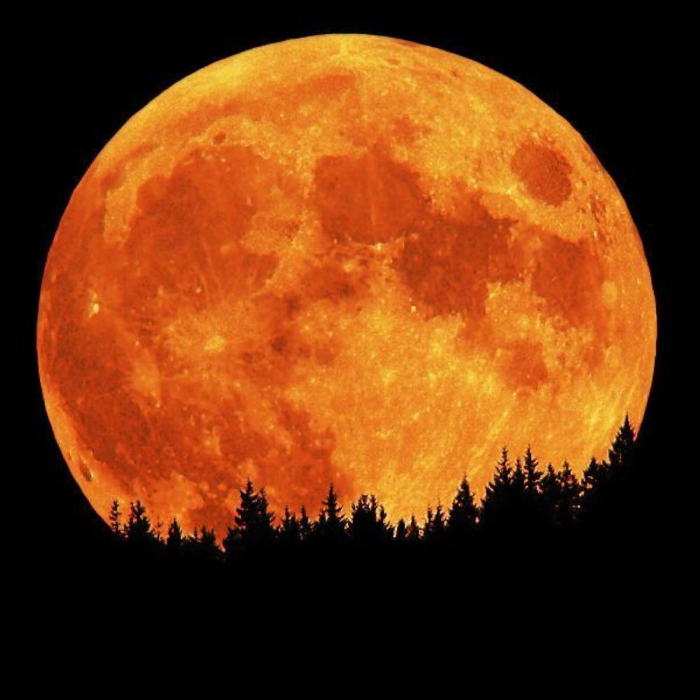 بالصور صور القمر العملاق , اجمل صور للقمر الرائع 12303 12