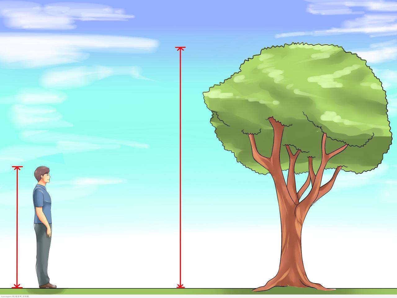 بالصور حبوب الزنك للطول , كيف اتغلب على قصر الطول بواسطة حبوب الزنك 12324 2