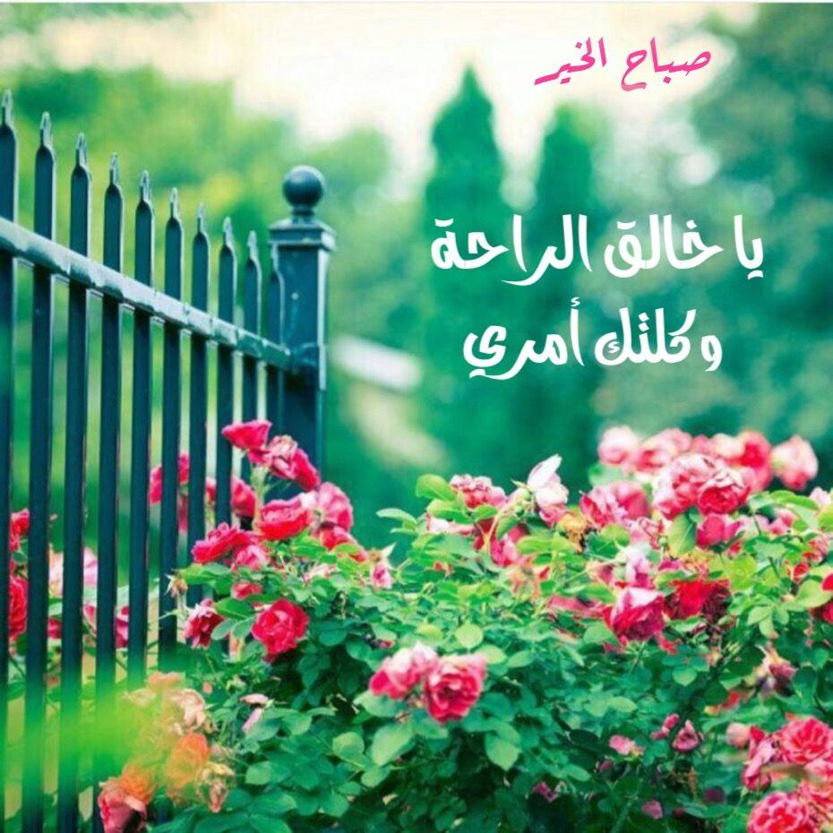 بالصور كلمة عن الصباح , اجمل كلمات عن اجمل صباح 12342 16