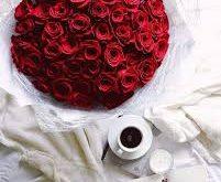 صور اجمل صور ورد , الورود لها جمال وعبير رحيق وعطر