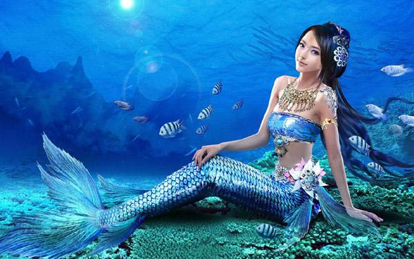 صورة صور عروسه البحر , حقائق عن عروسه البحر