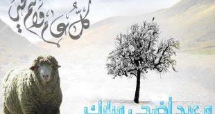 صورة صورة العيد الكبير , العيد و صور التهنئة الرائعة
