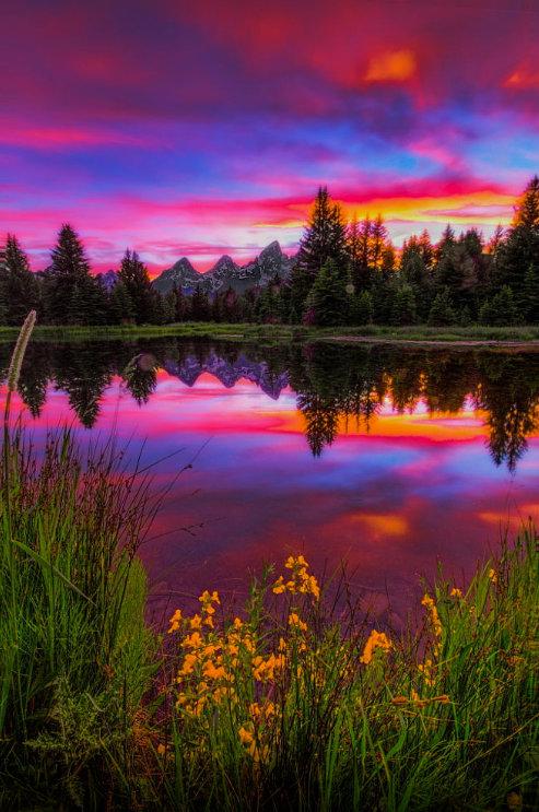 صورة صور عن الطبيعة , صور الطبيعة الخلابة من حولنا