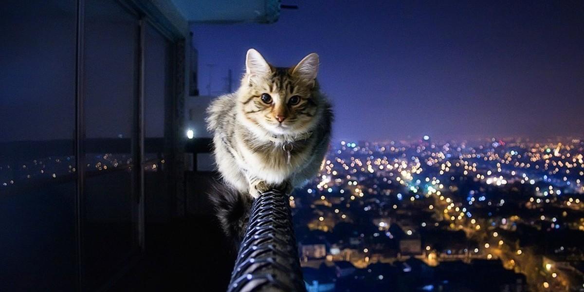 صورة اجمل الصور في العالم فيس بوك , صور للفيس بوك تهبل