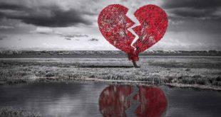 صورة صور قلوب مجروحه , وصف وجع القلب في صور
