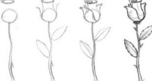 صورة كيفية تعلم الرسم للمبتدئين , بدائيات الرسم للمبتداين