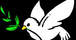 صورة امثال وحكم عن السلم والسلام , اشهر الحكم والامثال عن السلم والسلام