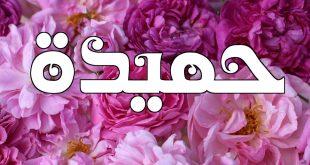 صورة معنى اسم حميده , ما اصل اسم حميده وما معناه