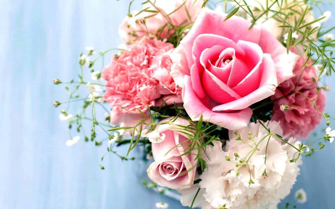 صور صور الورد , اشكال وانواع الورد