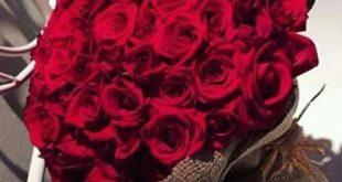 صورة احلى بوكيه ورد احمر , قمه الرومانسيه هي الورد