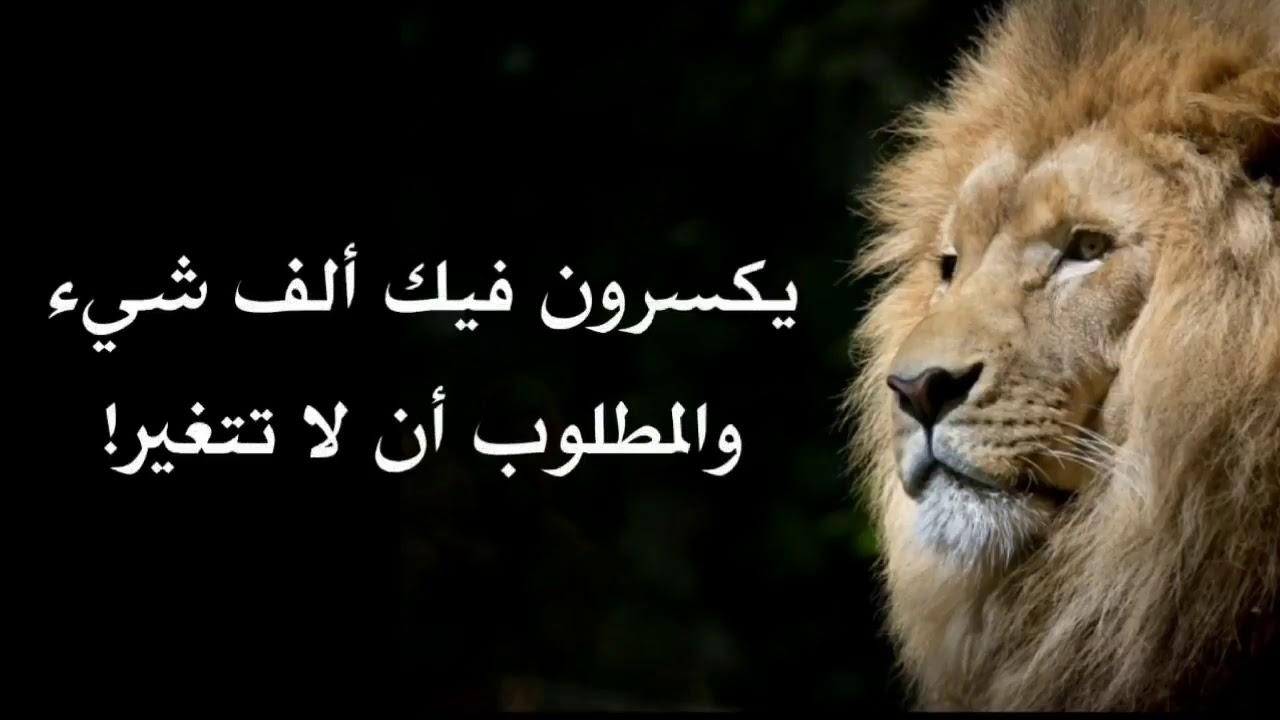 صورة حكم اليوم , حكم ماخوذة من الحياة