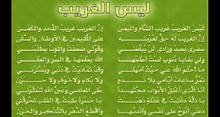 صورة اناشيد اسلامية روعة , اجمل انشودة اسلامية عليك سماعها
