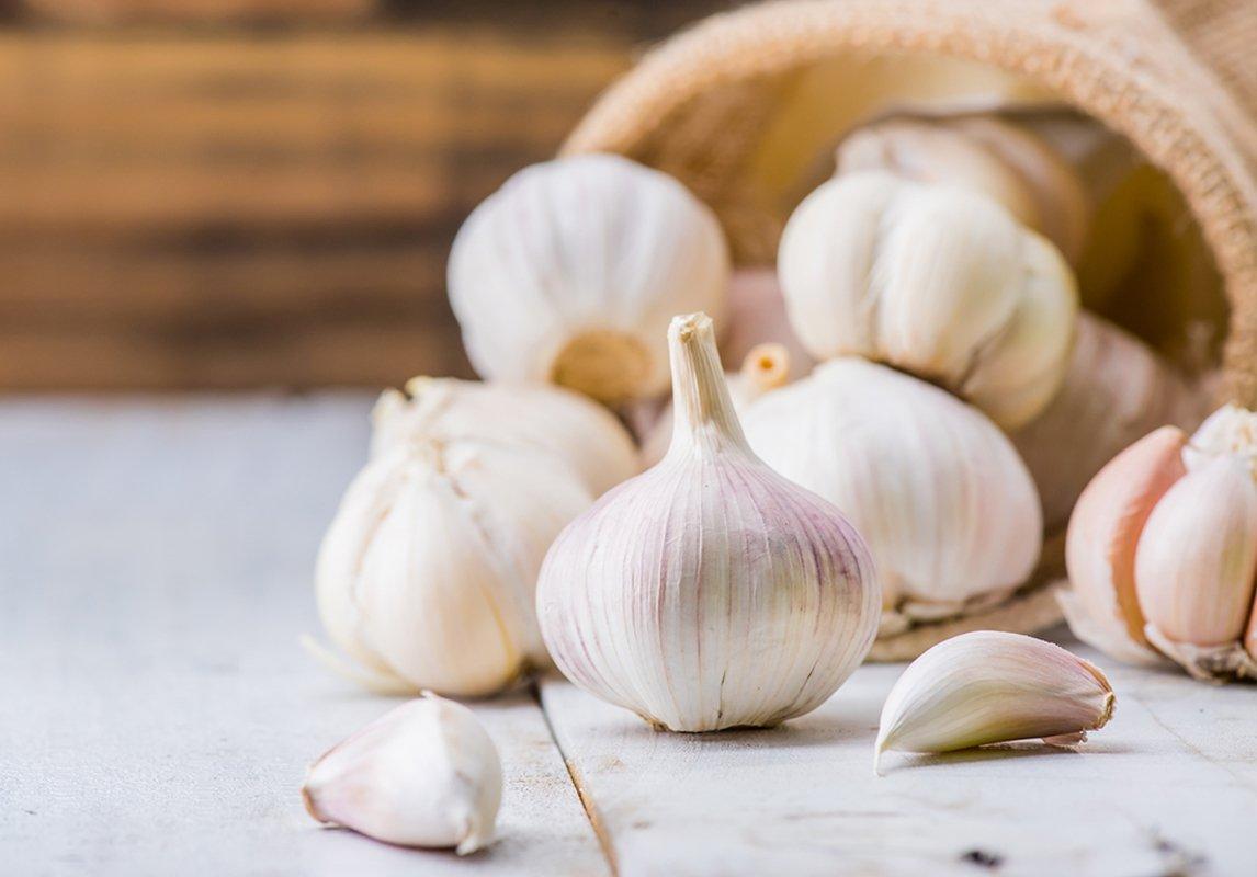 صورة فوائد اكل الثوم , معلومات تهمك عن اهمية الثوم